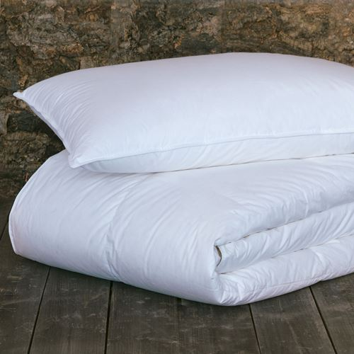Picture of Seabrook Comforter & Bed Pillows